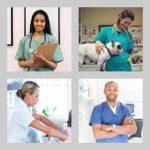 Uniforme Médical avec Haut et Pantalon – Ensemble Uniformes Unisexe 100% Sanfor Coton Oeko-Tex Certifié pour Les Professionnels Médecins Infirmières Vétérinaires Dentistes (S, Blanc)