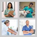 Uniforme Médical avec Haut et Pantalon – Ensemble Uniformes Unisexe 100% Sanfor Coton Oeko-Tex Certifié pour Les Professionnels Médecins Infirmières Vétérinaires Dentistes (XXL, Blanc)